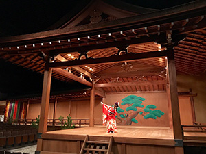 nana_phot_20171017.jpg