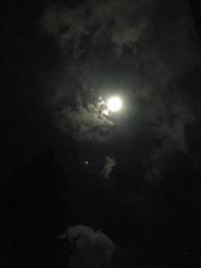 nana_phot_20180102.jpg